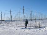 アラスカにあるHAARPのアンテナ施設